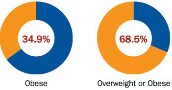 Obesity Trends 1