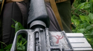 NPA gun