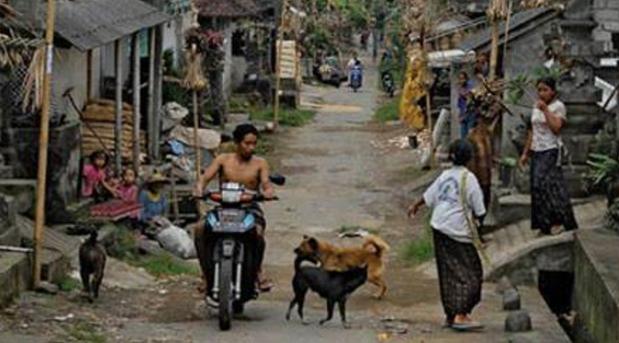 12-23 Who Fettishsizes the Third World